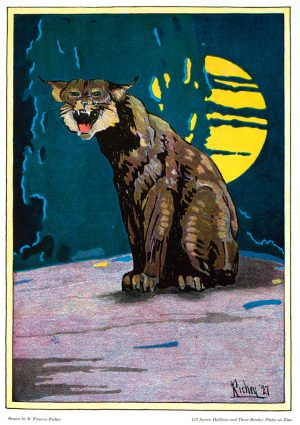 Night Cat | Vintage Retro Poster | Colour Factory Editions